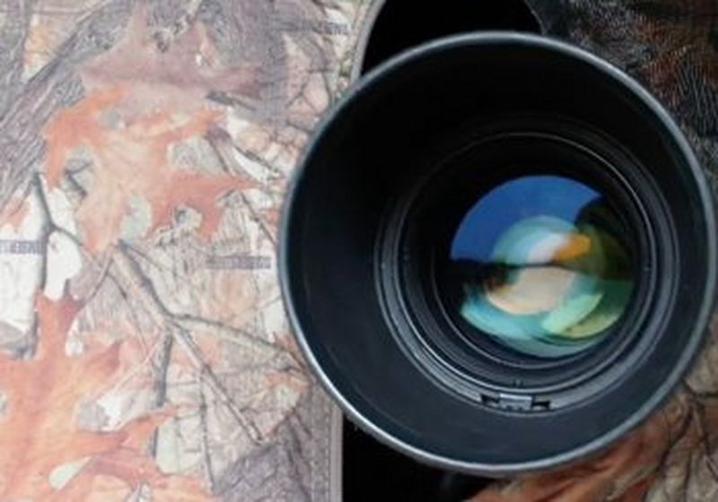 A huge camera lens peeks through camouflage.