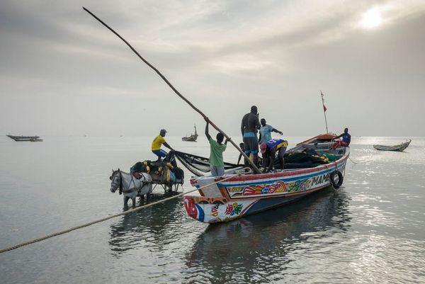A boat unloading on the beach at Fadiouth, Senegal.