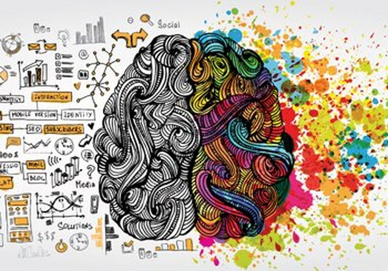Illustration of a brain, showing the challenges of the business world on the left in simple line drawings of black, grey and orange, and bright, multi-coloured paint splashes on the right.