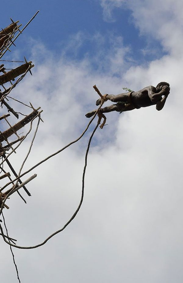 A Vanuatu tribesperson jumps from a ledge