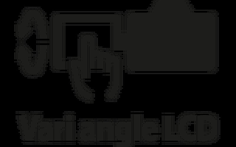 Vari-angle LCD