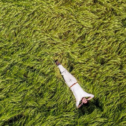 Man lying in field of long grass