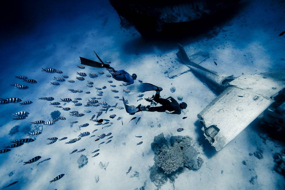 Two divers swim down to a plane wreck on the sea bed, followed by a shoal of stripy fish.