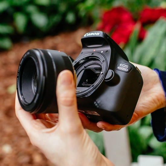 Canon eos 4000d interchangeable lens cameras floral