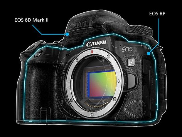 Canon EOS RP and Canon 6D comparison image