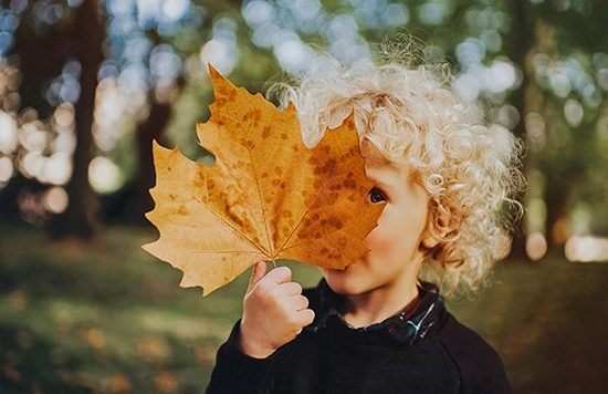 A child holds an autumn leaf larger than their face.