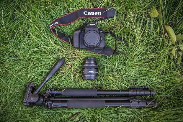 A Canon EOS 77D with a Canon EF-S 35mm f/2.8 Macro IS STM lens and a tripod lie on long grass.