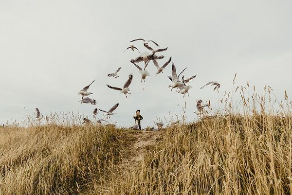 A small boy stands on top of a hill, seagulls flying in an arc above him. Photo by Christian Anderl.