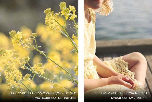 A composite photo shows a yellow flower and a girl in a yellow dress, photographed by Hannah Clark on a Canon EOS 250D.
