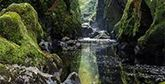 A river flowing through a landscape of mossy rocks.