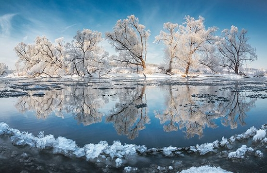 Snow-covered trees reflected in the clear water of a lake in Banff National Park. Photograph by Vladimir Medvedev.