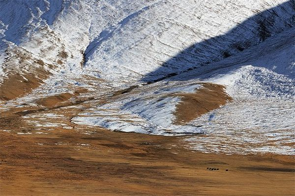 A landscape image shows the bottom of the Altai Mountains in Mongolia where the bottom of the snow meets grassland.