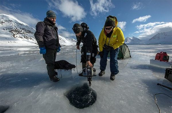 Three men in cold-weather clothing stand at the breathing hole in the ice; one of them is lowering a drone into the hole.