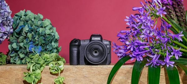 The Canon EOS R placed in a flowery still life.