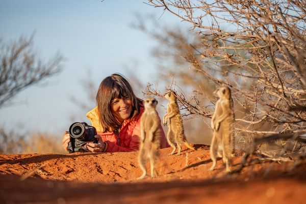 Marina Cano lying on the sand photographing surrounding meerkats.