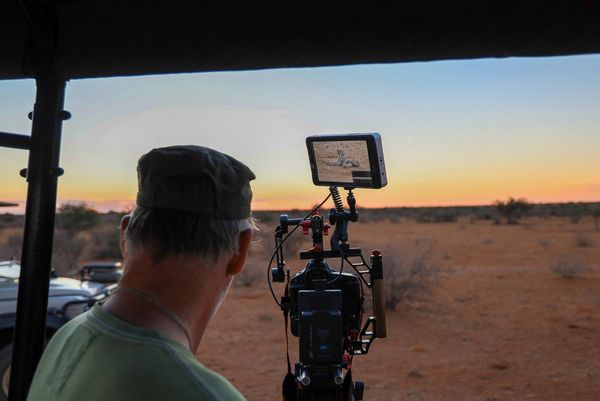 Second camera operator Bosie Vincent using a Canon EOS-1D X Mark III to capture a shot of a cheetah, visible in the monitor on top of the kit.