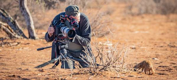 A man filming a baby meerkat in the desert with a Canon EOS-1D X Mark III.