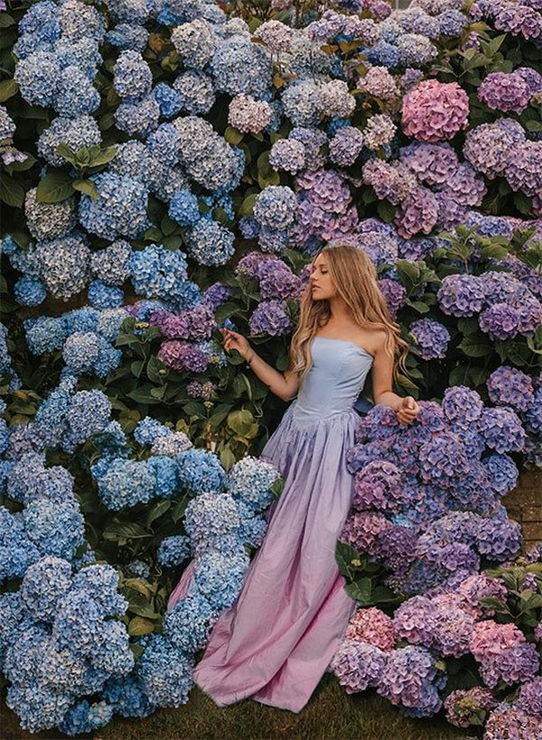 Pressed up against colourful hydrangeas, Rosie wears a gown with similar colours to the flowers around her.