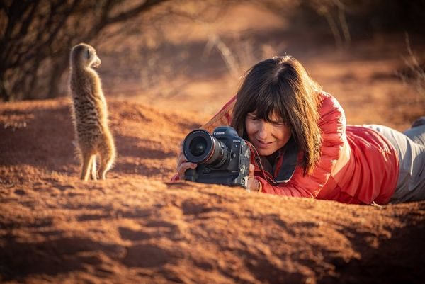 Wildlife photographer Marina Cano lies on the ground using a Canon EOS-1D X Mark III to take a close-up of a meerkat in the Kalahari Desert.