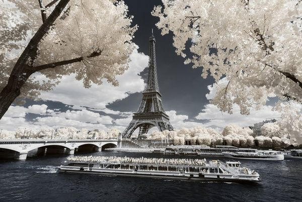 An infrared shot of the Eiffel Tower and boats on the Seine in which the trees appear white. Taken by Pierre-Louis Ferrer.