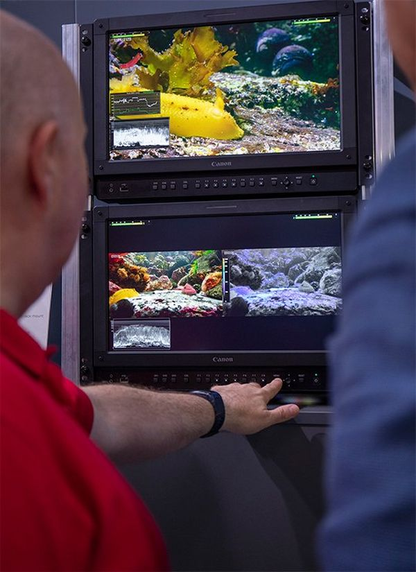 People looking at colour grading on 4K displays at IBC.