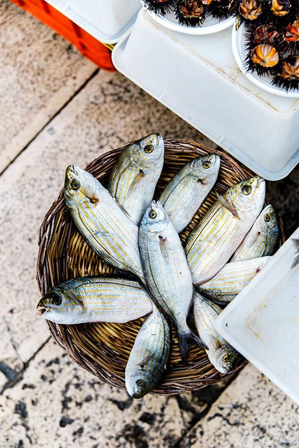 A wicker basket of fresh fish in an Italian fish market. Photo by Annapurna Mellor with a Canon EF 24-70mm f/2.8L II USM lens.