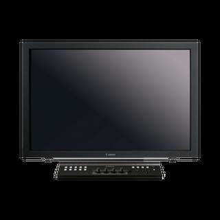 DP V3010