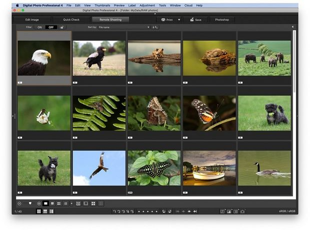 The main screen of Digital Photo Professional, with previews of 15 nature images.