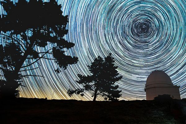 A circular star trail about a silhouetted line of trees.