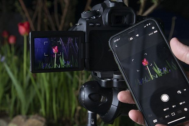 A Canon EOS 90D connected to a smartphone with the Canon Camera Connect app.