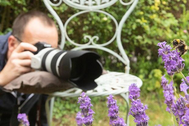 A photographer resting his lens on a beanbag on a garden chair, shooting purple flowers.