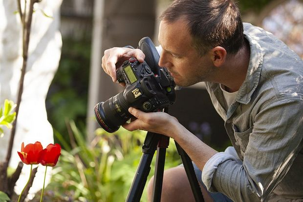 A photographer frames up his subject: a tulip growing in his garden.