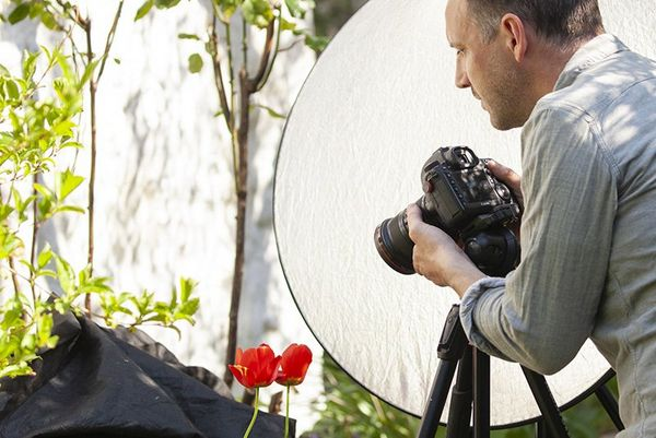 A reflector blocks light from hitting the tulips in frame.