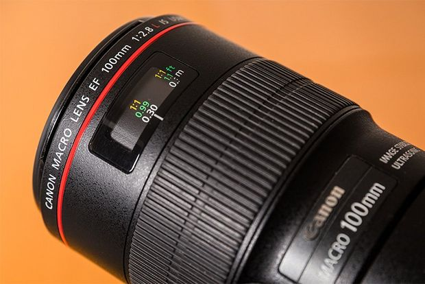A Canon EF 100mm f/2.8L Macro IS USM lens.