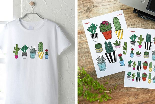 A white t-shirt with cacti iron on transfers (left). Two pages of different cacti images to be used as iron on transfers (right).