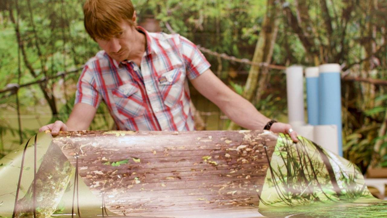 man printing a forest bridge wall paper