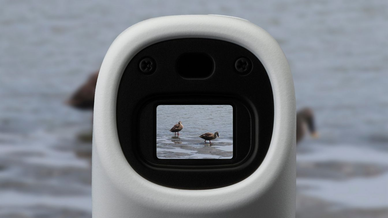 Canon PowerShot ZOOM sample image of ducks through viewfinder