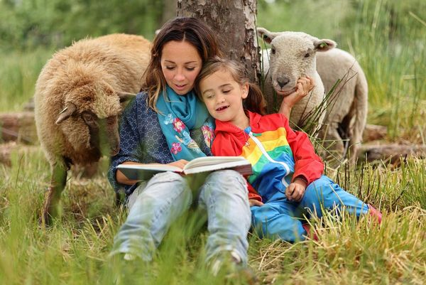 A young woman and a girl sit in long grass against a tree reading a book as two sheep look on around the tree.
