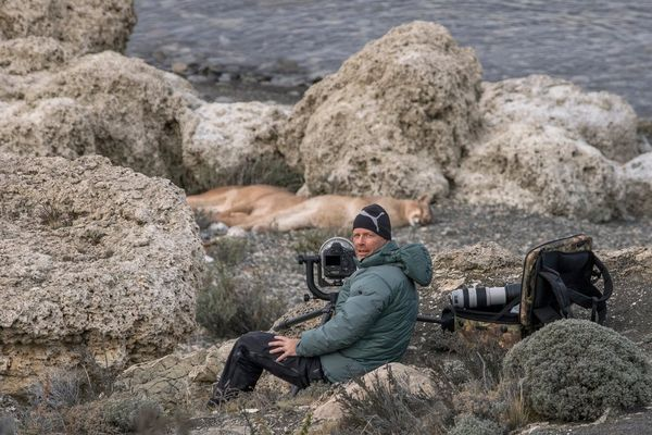 Wildlife photographer Ingo Arndt sits with his Canon camera equipment in front of sleeping pumas.