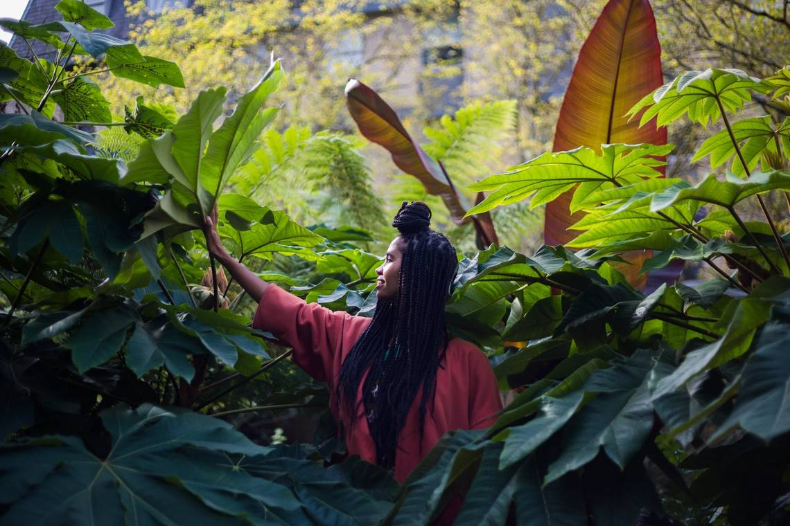 Vocalist and songwriter Desta Haile in side profile, surrounded by foliage.