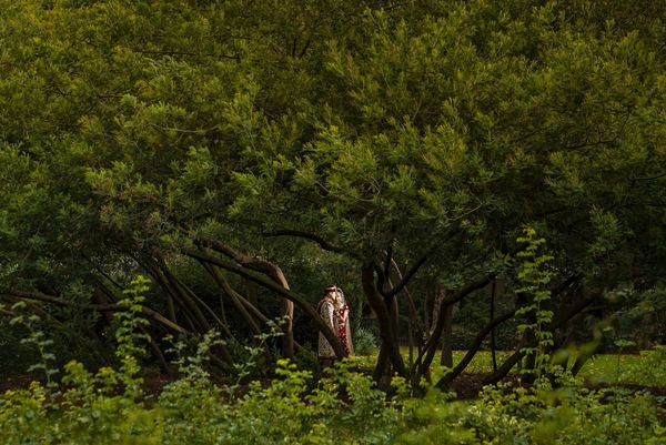 A bride and groom stand beneath the boughs of a huge tree, photographed from afar by Sanjay Jogia