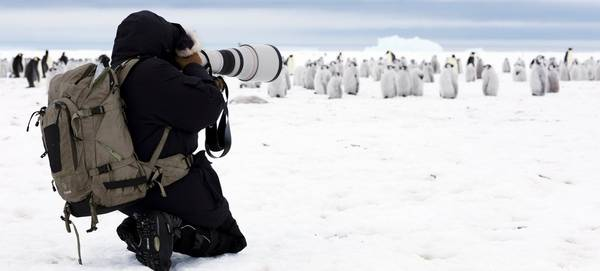 Lucia Griggi with her Canon kit in front of a group of penguin chicks.