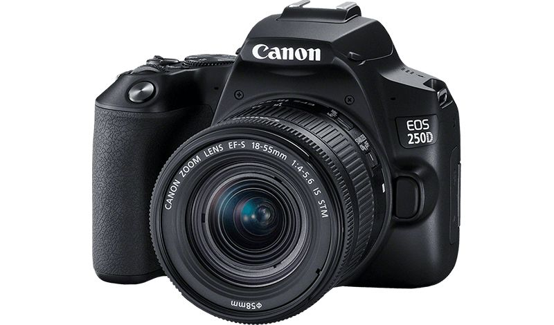 EOS 250D with standard zoom lens