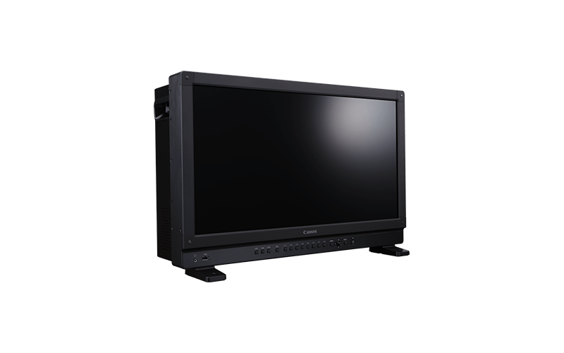 video display dp v2421