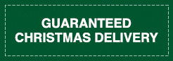 Guaranteed Christmas Delivery !