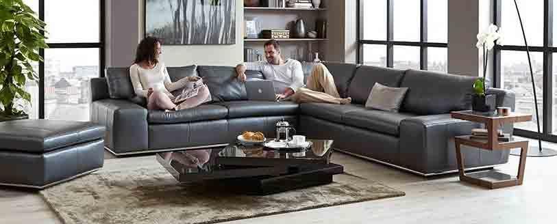 Iconica Palladium Sofa