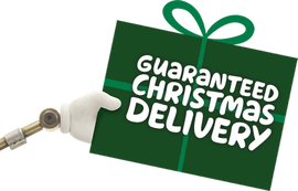 Guaranteed christmas delivery at DFS