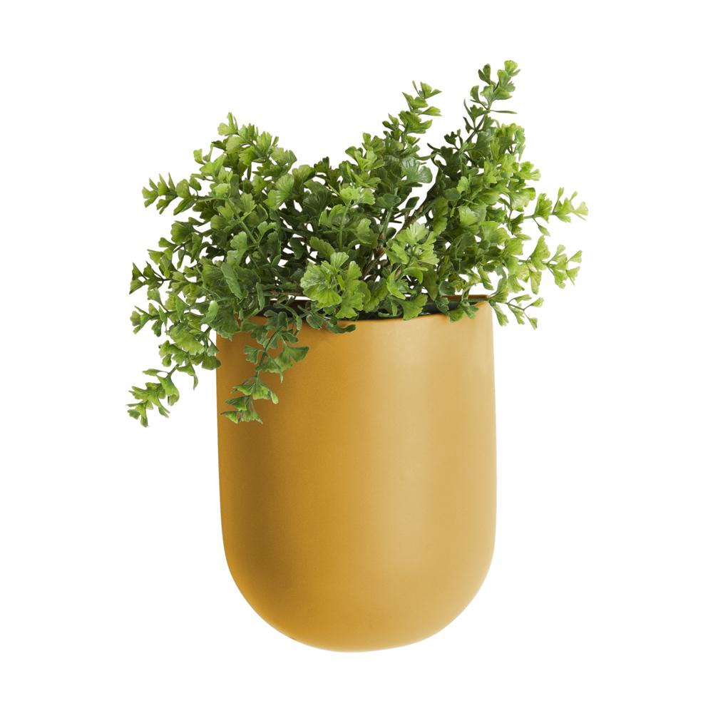 Murus wall planter tall mustard