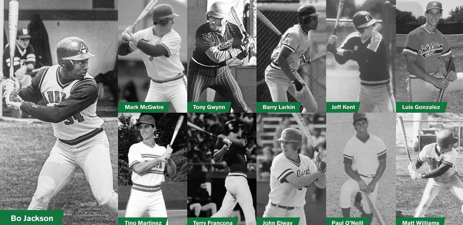 team-easton-baseball-softball