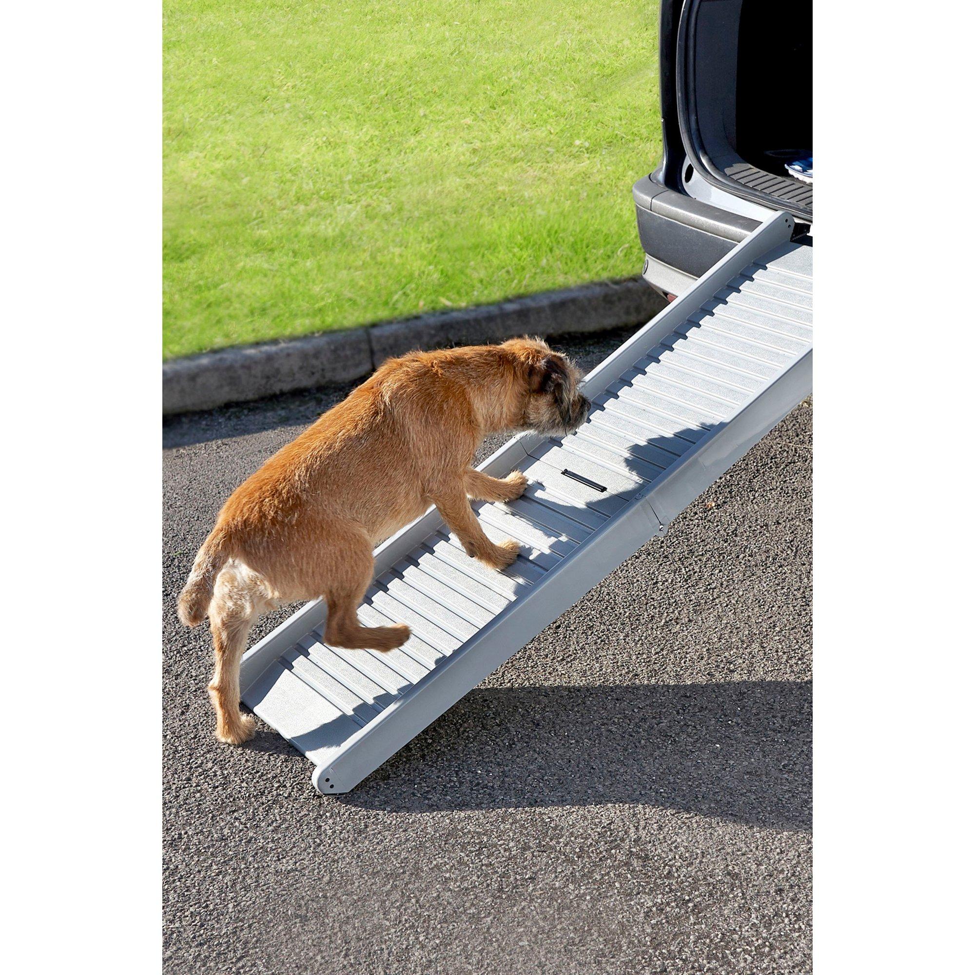 Image of Portable Folding Pet Ramp
